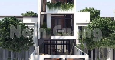 6 nguyên tắc vàng thiết kế nhà đẹp mặt tiền hẹp